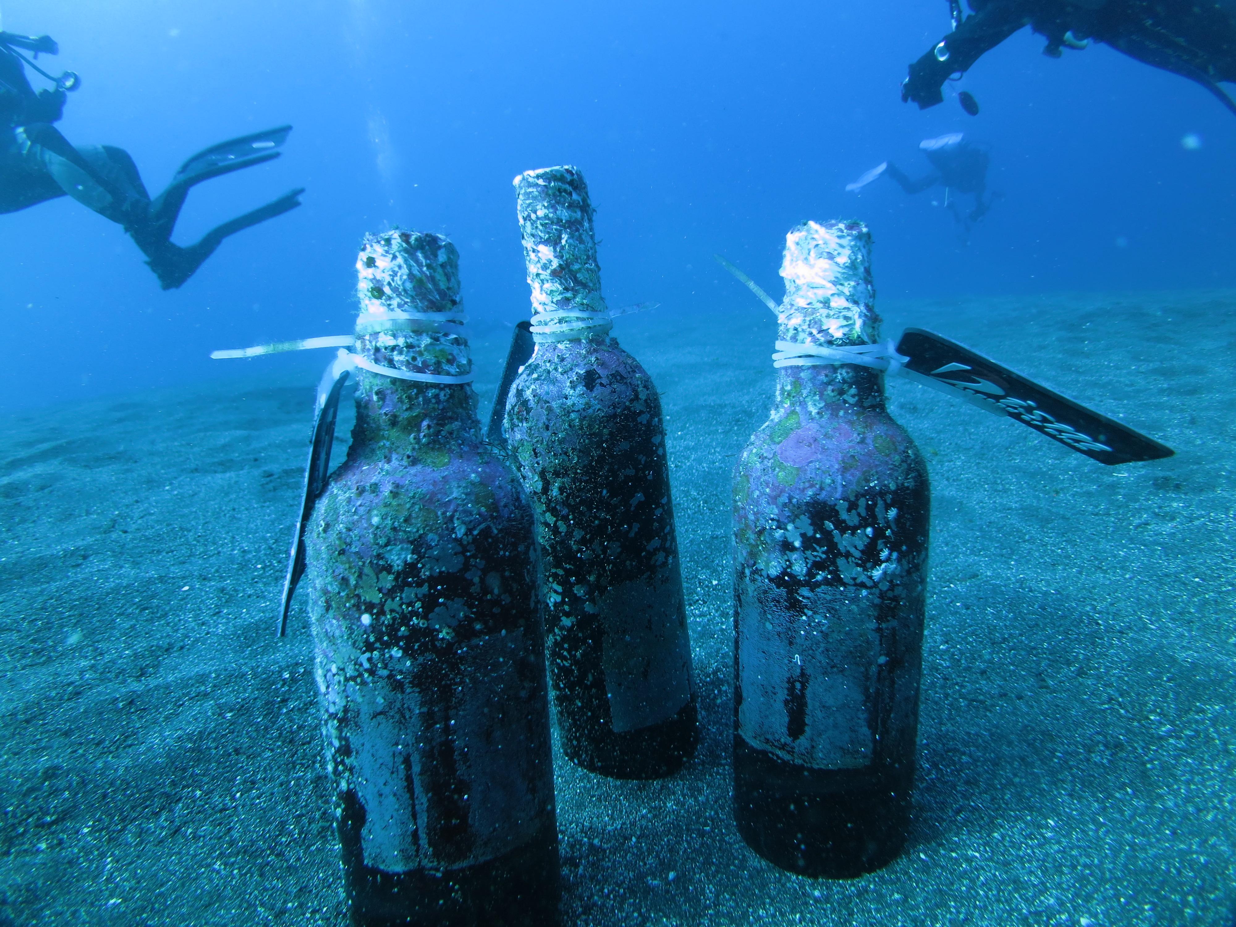 大島「海底貯蔵酒」ツアー♪